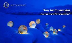 metavision TDP - frase